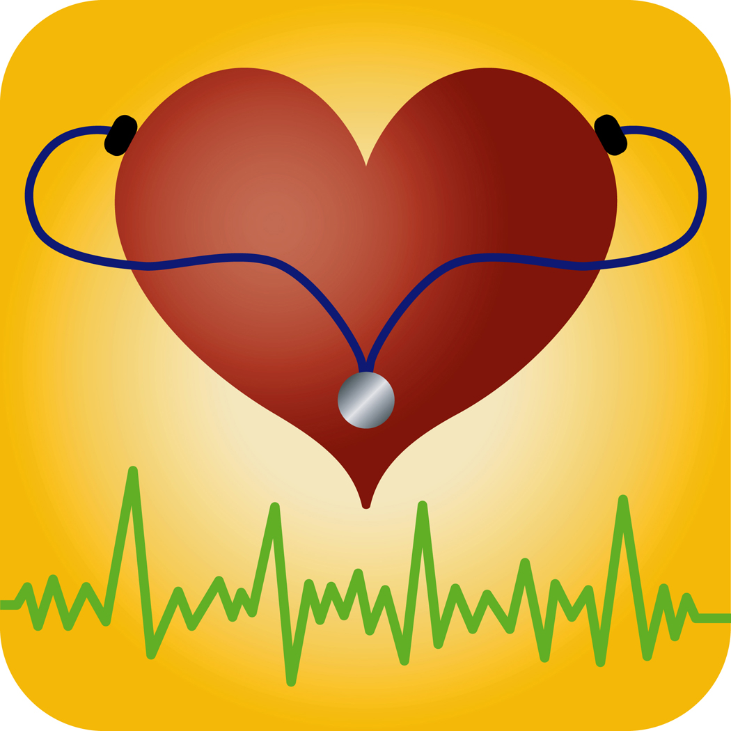 The organ we love how the heart works bcls certification how the heart works 1betcityfo Choice Image